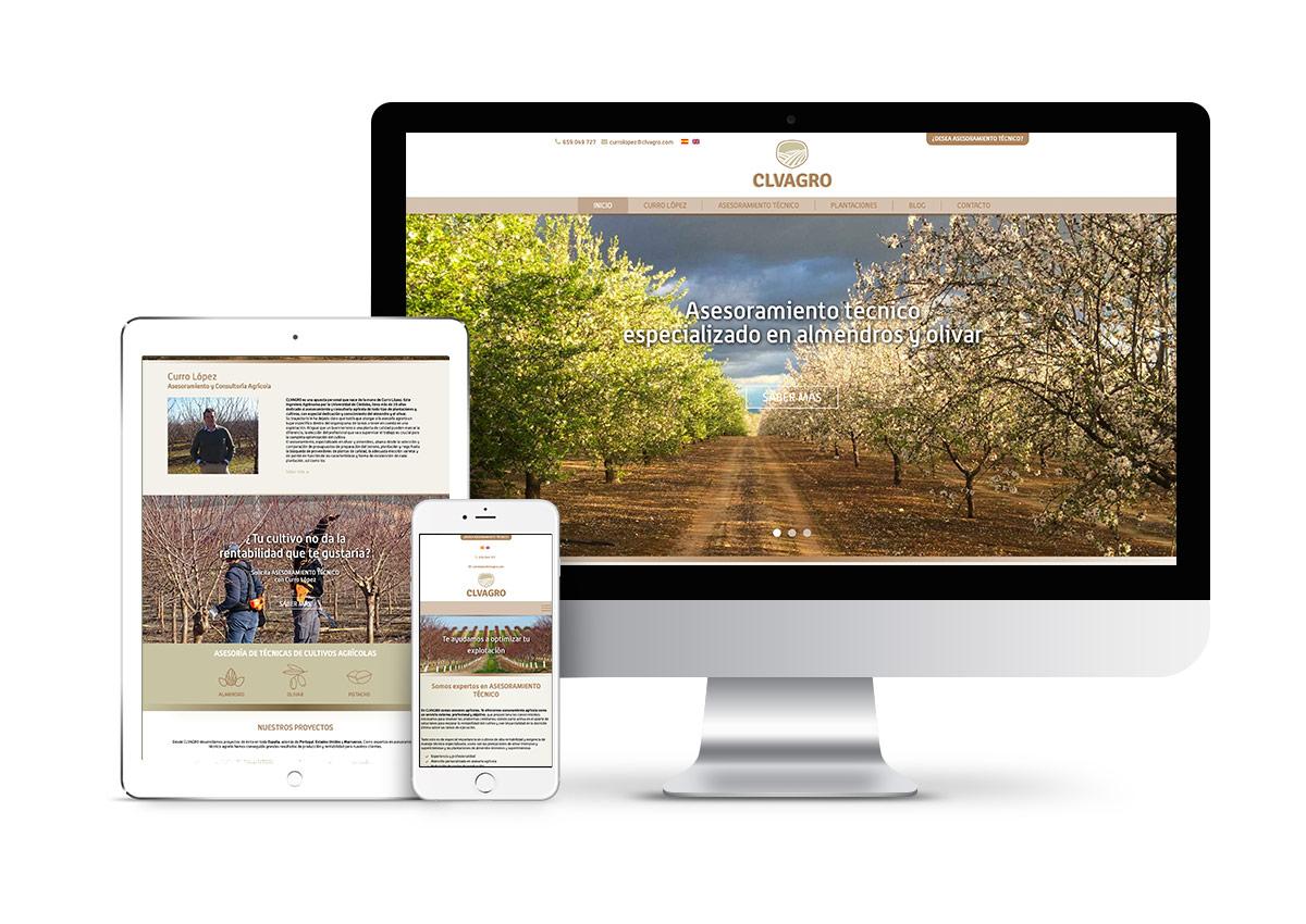 CLVAGRO – Diseño web