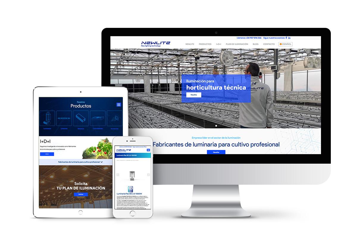 NewLite – Diseño web